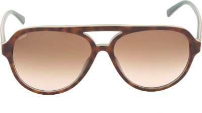 Tommy Hilfiger TH 7952 Hav/Blu C3 59 S Aviator Sunglasses(Brown)