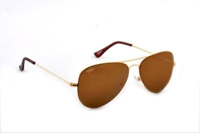 IMAGE 445 Aviator Sunglasses(Golden)