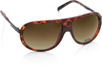Spykar Aviator Sunglasses