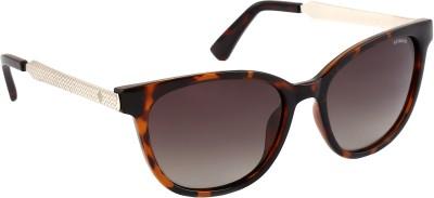 Polaroid PLD5015/S5594LLY Oval Sunglasses(Brown, Grey)