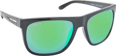 Arnette Wayfarer Sunglasses
