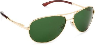 Rafa Chester Aviator Sunglasses