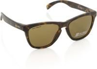 Joe Black JB-555-C6 Wayfarer Sunglasses(Brown)