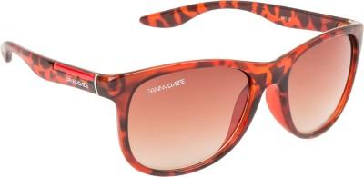 Danny Daze D-2536-C3 Over-sized Sunglasses