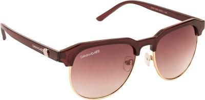 Danny Daze D-4007-C2 Round Sunglasses