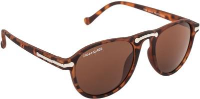 Danny Daze D-1711-C5 Wayfarer Sunglasses(Brown)