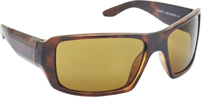 Arnette AN_4168_BDBRNBRN Rectangular Sunglasses(Brown)