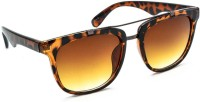 Stacle Stacle ST 2014-8 Havana Rectangular Sunglasses(Brown)