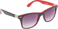 Image S416-C4 Wayfarer Sunglasses(Grey Violet)