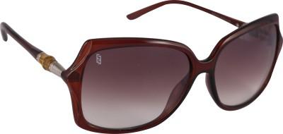 Esque Over-sized Sunglasses