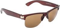 Aten 3985-2 Wayfarer Sunglasses(Brown)