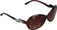Amour SKU6B Oval Sunglasses(Brown)