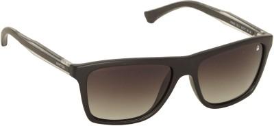 United Colors of Benetton Black Shaded Wayfarer Sunglasses