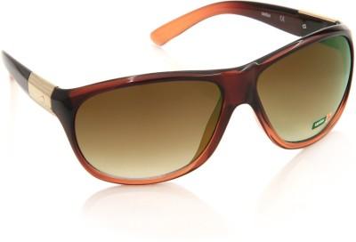 Spykar Over-sized Sunglasses