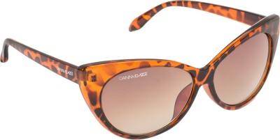 Danny Daze D-2541-C3 Over-sized Sunglasses