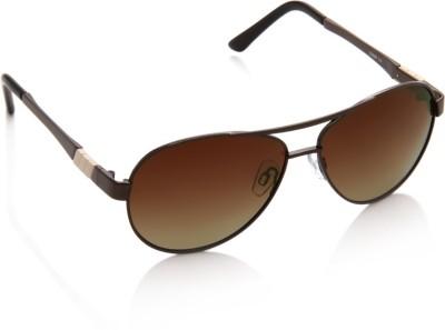 IMAGE S366P-C3 Aviator Sunglasses(Brown)