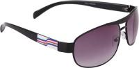 Camerii SOW50 Oval Sunglasses(Black)