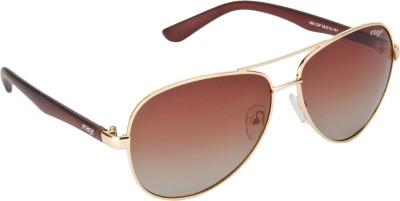 IMAGE Aviator Sunglasses