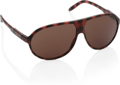 Timberland Aviator Sunglasses