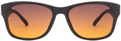 Fastrack PC001AM16 Wayfarer Sunglasses(Brown)