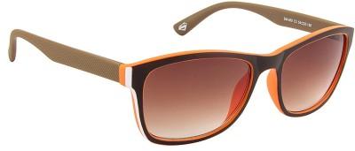 Superman SM-060-C3 Wayfarer Sunglasses(Brown)
