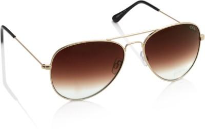 IDEE S1803-C14 Aviator Sunglasses(Brown)