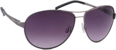 Joe Black C4 Aviator Sunglasses(Grey)