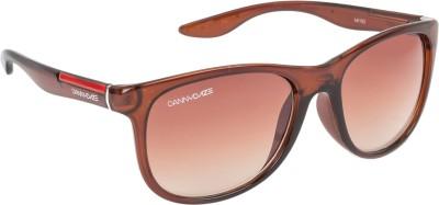 Danny Daze D-2536-C2 Over-sized Sunglasses