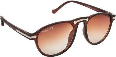 Danny Daze D-1711-C3 Wayfarer Sunglasses(Brown)
