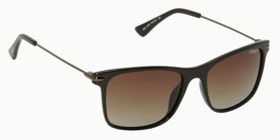 IMAGE IM-526-C4P Wayfarer Sunglasses(Brown)