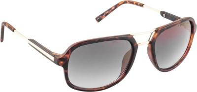Farenheit SOC-FA-1218-C5-New Spectacle Sunglasses(Golden)