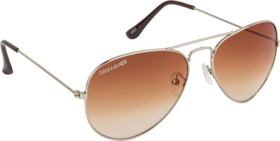 Danny Daze D-603-C9 Aviator Sunglasses(Brown)