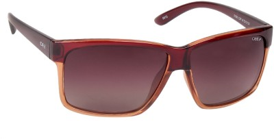 IDEE IDEE S1992 C3P 60 Wayfarer Sunglasses(Brown)