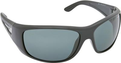 Arnette AN_4179_LPBLKBLK Rectangular Sunglasses(Black)