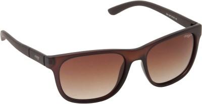 IMAGE IM-524-C4P Wayfarer Sunglasses(Brown)