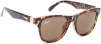 Amaze AM0494 Wayfarer Sunglasses(Brown)