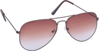 dM AVIO6 Aviator Sunglasses