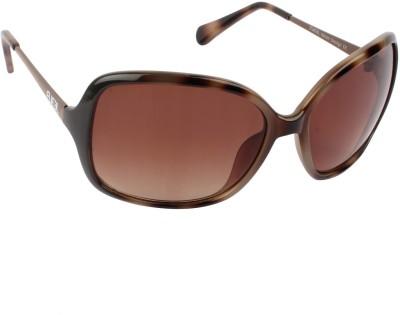 Fueel Over-sized Sunglasses