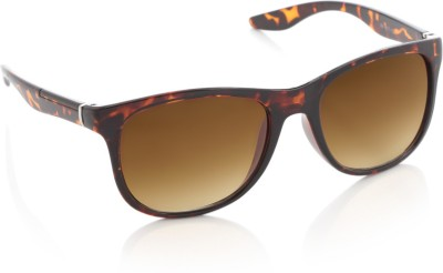 Rockford RF-077-C3 Wayfarer Sunglasses(Brown)