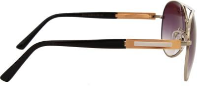 NST Aviator Aviator Sunglasses