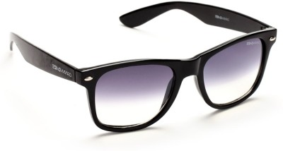 Danny Daze D-1704-C2 Wayfarer Sunglasses(Grey)