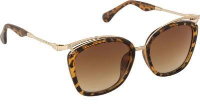 Danny Daze D-2808-C3 Oval Sunglasses