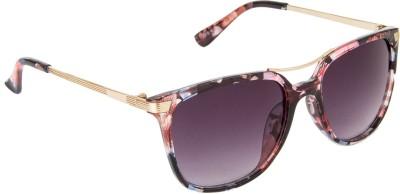 Danny Daze D-2116-C4 Wayfarer Sunglasses(Black)
