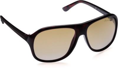 PANACHE Edge Wayfarer Sunglasses