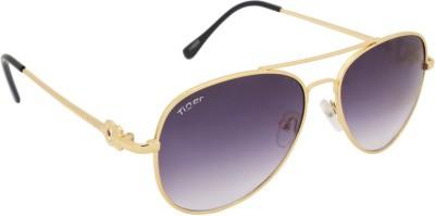 Tiger eyewear Aviator Sunglasses