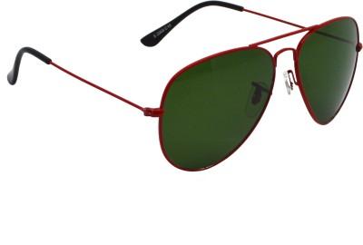 Red Knot T3026 Aviator Sunglasses