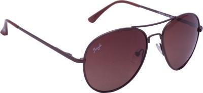 Floyd 121044_BRN_BRN Aviator Sunglasses(Brown)