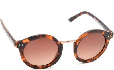 Joe Black JB-821-C3P Round Sunglasses(Brown)