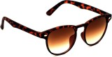 6by6 SG1445 Round Sunglasses (Brown)