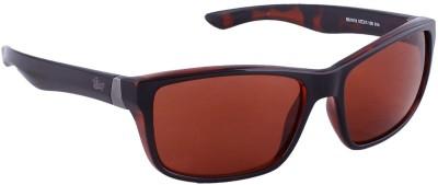 Bling Wayfarer Sunglasses